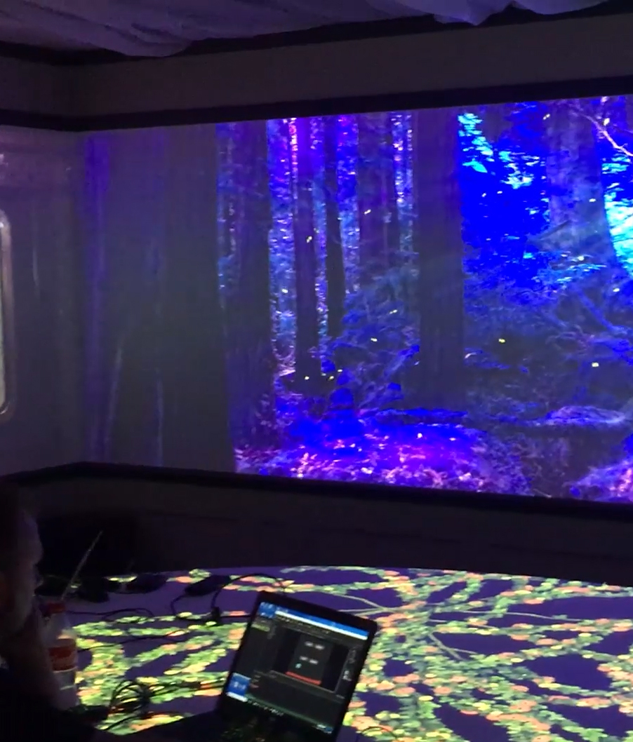 PROJECTION BASED EXPERIENCES